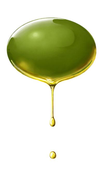 Das bild das alles über Olivenöl sagt