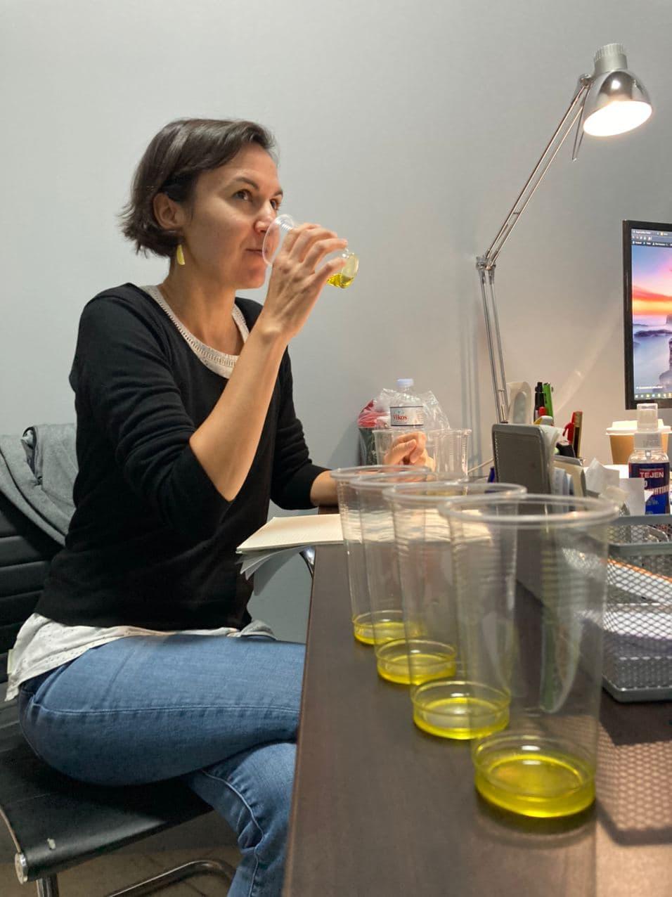 Verkostung der Olivenöl Ernte 2020